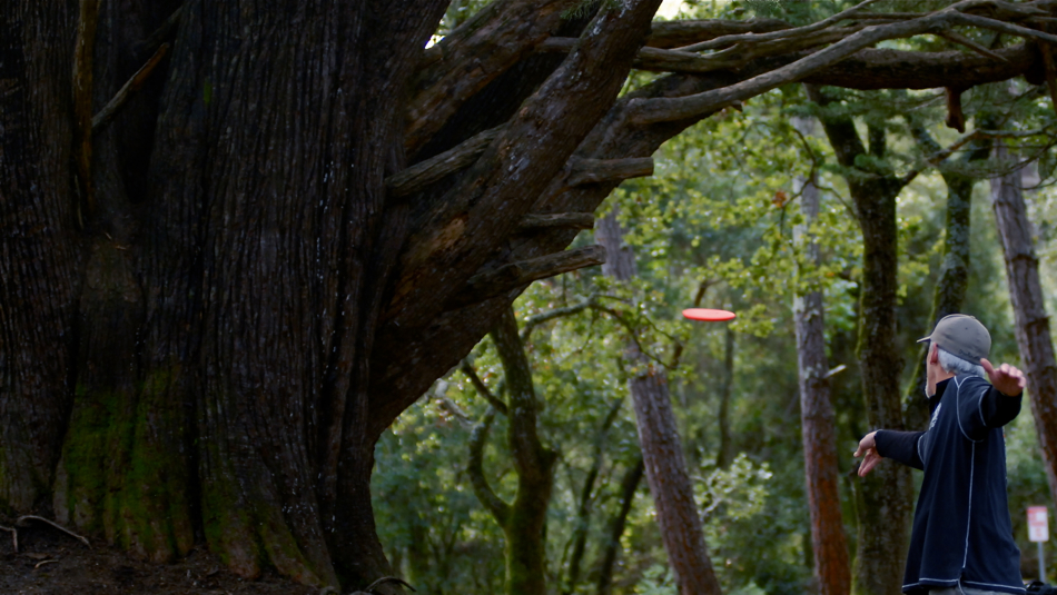 Tree fun at De Laveaga in Santa Cruz. Bill Sherman (USA) in action.